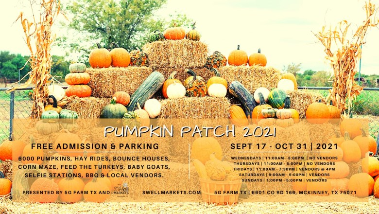 who doesn't love a pumpkin patch when october rolls around?
