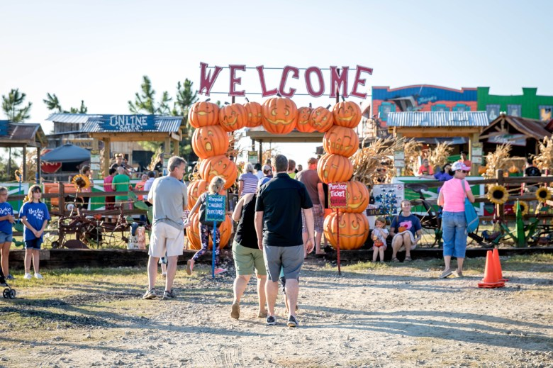 yesterland farm, pumpkin patch, fall festival, things to do this weekend