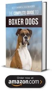 Boxers For Sale In Illinois : boxers, illinois, Boxer, Puppies, Illinois