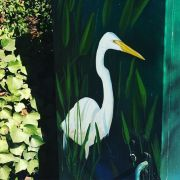 Wild ART - Last Week on Local Santa Cruz