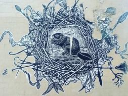 San Lorenzo beaver