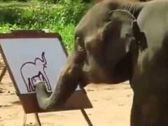 Video: An Elephant Painting an Elephant