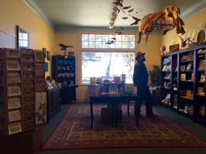 The museum has a recently renovated bookstore, as well as other new additions.