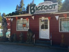 The Bigfoot Discovery Museum