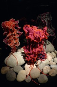 © Institute For Figuring's Crochet Coral Reef project, 2005–ongoing.