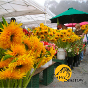 Aptos Farmers Market