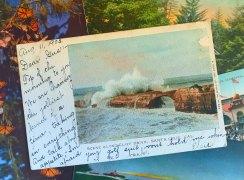 Five Summer Adventures in Santa Cruz