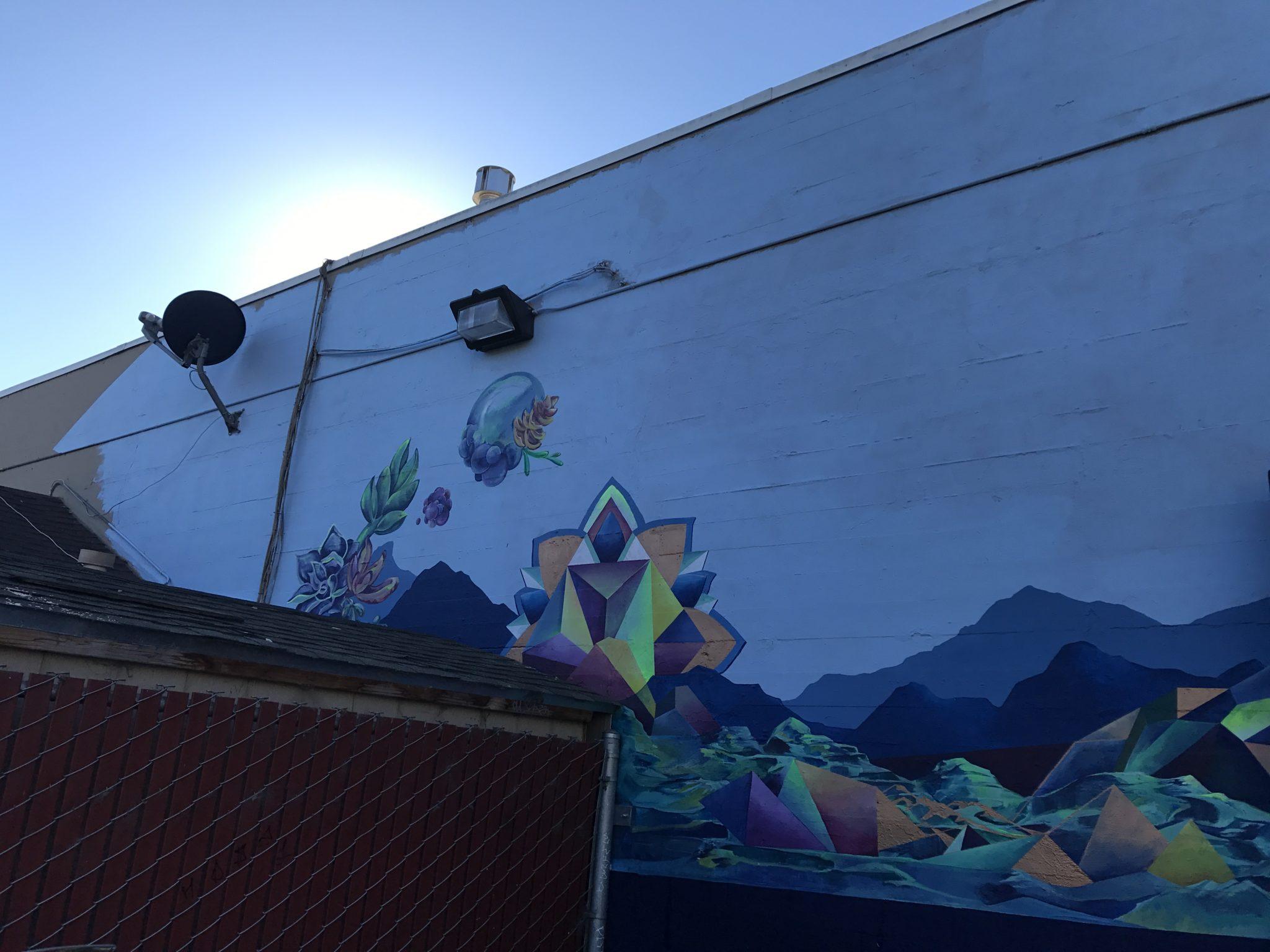 Rachel Barnes - Mandala Mural