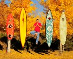 Gerry Lopez Surfboards
