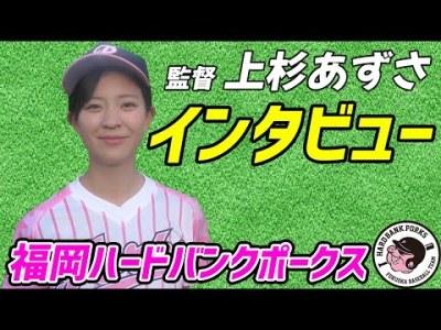タレント芸人一般人が所属する福岡ハードバンクポークスってどんなチーム?