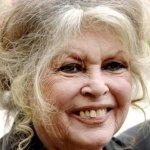 """Grâce à Brigitte BARDOT le terme de """"Vié-toboze"""" retrouve sa place dans la langue créole"""