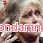 """Injures racistes envers les Réunionnais: Brigitte Bardot condamnée par la justice à 20 ans ferme de """"mutisme obligatoire"""""""