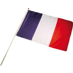 drapeau-120x180-france
