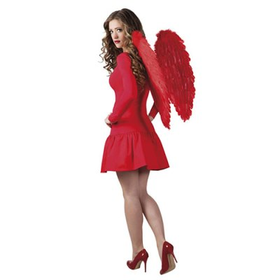 Ailes plumes rouges