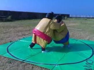 location sumo adulte