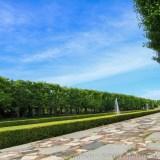 昭和記念公園の通り