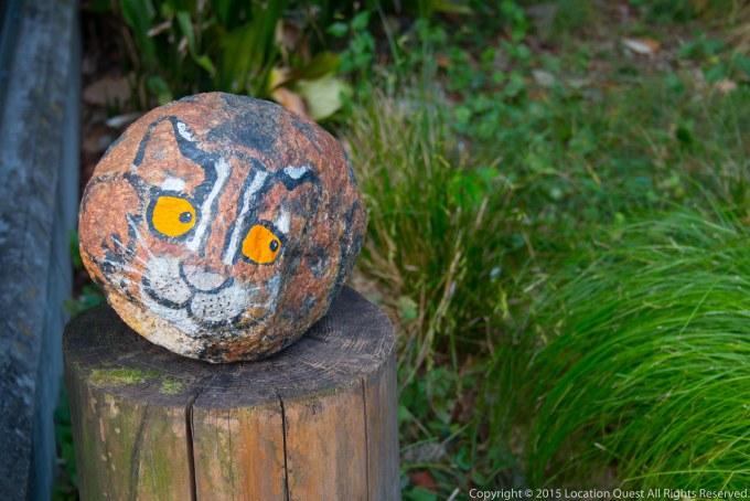 ヤマネコ石