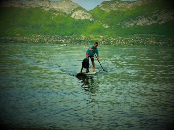 défi boby paddle avec un chien