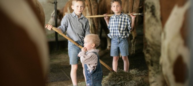 How cats and cows protect farm children from asthma
