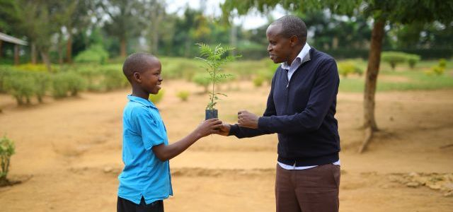 The man who wants to pull 60,000 Rwandans out of poverty by planting trees