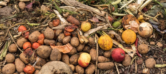 Global food waste could rise by a third by 2030