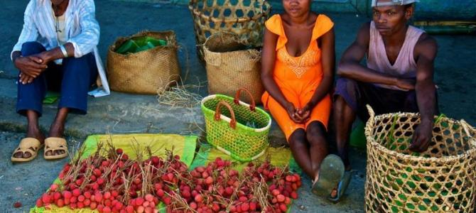 There can be no sustainable development without profound changes in food systems