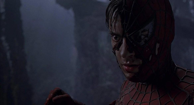 l'uomo ragno combatte