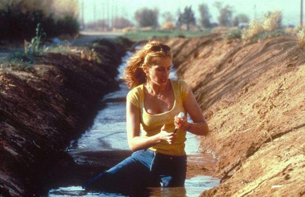 Erin Brockovich – Forte come la verità: Un film sulla difesa della vita 6