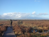 Taking a wander at Flanders Moss