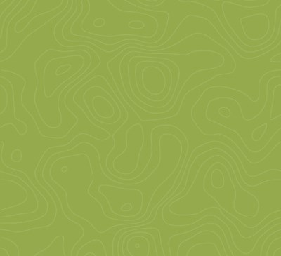 pattern-moss-green