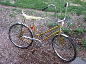 "Westen Flyer Miss Buzz Bike 24"""