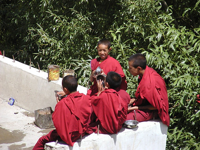 Lunch hour at Likir monastery