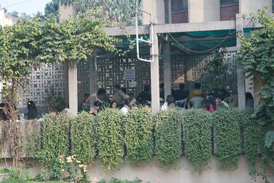Restaurant: Patio seating at Triveni