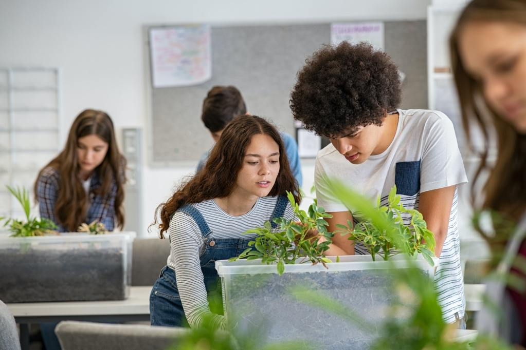 College students studying plants at biology lesson at school