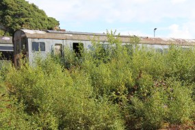 Dartmoor Railway 2014 - Meldon Viaduct (1132 Diesel Electric Multiple Unit (DEMU) 'Thumper' 205028)