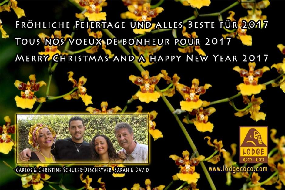 Lodgecoco happy new year 2017