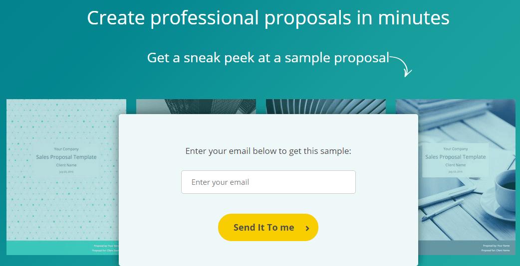 lead magnet proposals