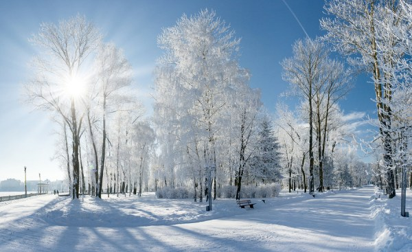 living earth sounds of winter