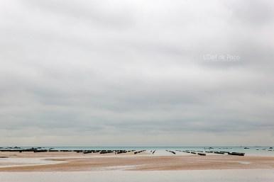 Photo #24 – Au bout du Sillon