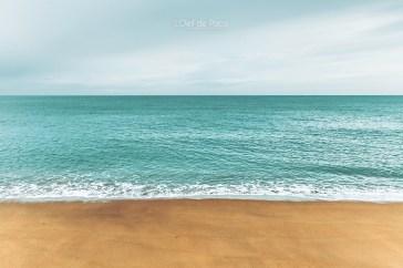 Photo #95 - Une plage en Hiver