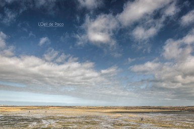 Photo #118 – Grande marée