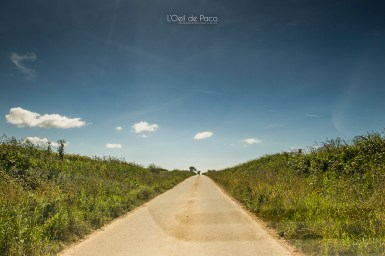 Photo #179 – Une route sans fin
