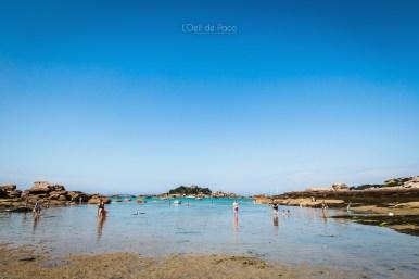 Photo #208 – summertime