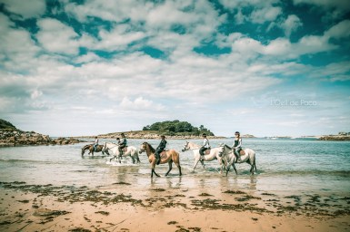 Photo #234 - Les cavalières