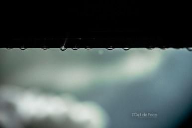 Photo #241 - Regarde les gouttes tomber
