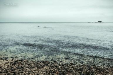 Photo #262 – Bain d'Automne