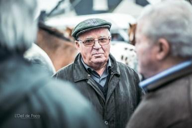 L'Oeil de Paco - Foire aux Poulains - Plaintel - 2015 (26)