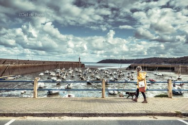 Photo #293 - La promenade du chien
