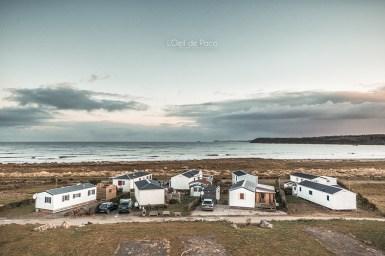 Photo #325 - La vie du bord de mer