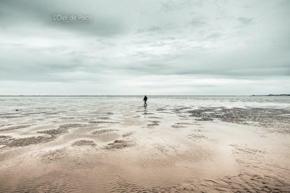 Photo #356 – L'Homme du milieu